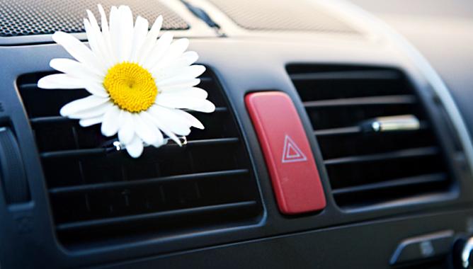 Профессиональная чистка кондиционера автомобиля в сервисных условиях