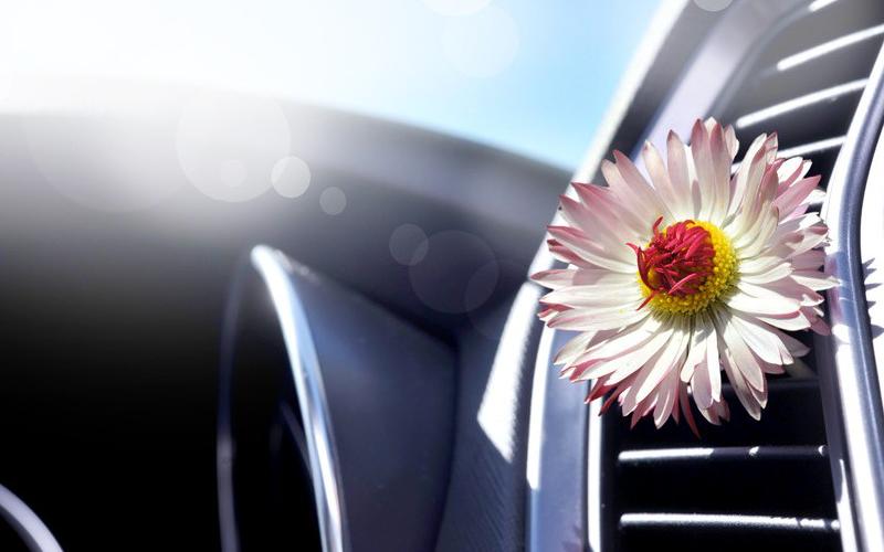Очистка кондиционера автомобиля: цена